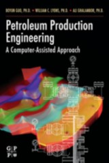 Petroleum Production Engineering, A Computer-Assisted Approach - Guo, PhD, Boyun - ISBN: 9780080479958