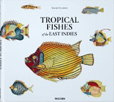 Tropical Fishes Of The East Indies - Fallours, Samuel/ Pietsch, Theodore W. - ISBN: 9783836505192