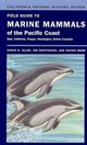 Field Guide To Marine Mammals Of The Pacific Coast - Webb, Sophie; Mortenson, Joe; Allen, Sarah G. - ISBN: 9780520265455