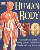 Human Body - Baggaley, Ann (EDT) - ISBN: 9780789479884