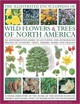 Illustrated Encyclopedia Of Wild Flowers & Trees Of North America - Lavelle, Michael; Walters, Martin; Cutler, Catherine; Russell, Tony - ISBN: 9780754820765
