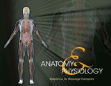 Anatomy & Physiology Reference For Massage Therapists, Spiral Bound Version - Milady - ISBN: 9781133704126