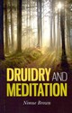 Druidry And Meditation - Brown, Nimue - ISBN: 9781780990286