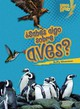 Sabes Algo Sobre Aves?/ Do You Know About Birds? - Silverman, Buffy - ISBN: 9780761393665