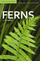Ferns Of Alabama - Spaulding, Daniel; Short, John - ISBN: 9780817356477