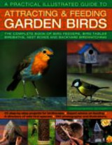 A Practical Illustrated Guide To Attracting & Feeding Garden Birds - Green, Jen (EDT) - ISBN: 9781844765713