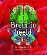 Brein in beeld - Ansfried Scheifes; Tom Kortbeek; Denis Le Bihan - ISBN: 9789085714156