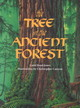Tree In The Ancient Forest - Reed-Jones, Carol - ISBN: 9781883220310