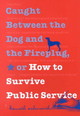 Caught Between The Dog And The Fireplug, Or How To Survive Public Service - Ashworth, Kenneth - ISBN: 9780878408474
