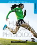 Human Anatomy & Physiology Laboratory Manual - Whiting, Catharine C. - ISBN: 9780321787002