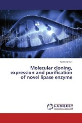 Molecular cloning, expression and purification of novel lipase enzyme - Arman, Kaifee - ISBN: 9783659970849