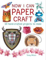 Now I Can Paper Craft: 20 Hand-crafted Projects To Make - Wilson, Tansy - ISBN: 9781784942441