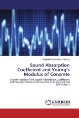 Sound Absorption Coefficient and Young's Modulus of Concrete - Caturza, Reginald Raymund A. - ISBN: 9783330026476