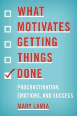 What Motivates Getting Things Done - Lamia, Mary - ISBN: 9781442203815
