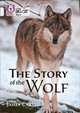 Story Of The Wolf - Carter, James - ISBN: 9780008208967