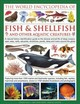 The Illlustrated Encyclopedia Of Fish & Shellfish Of The World - Hall, Derek/ Gilpin, Daniel/ Beer, Mary-Jane - ISBN: 9780754833581