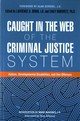 Caught In The Web Of The Criminal Justice System - Dubin, Lawrence A. (EDT)/ Horowitz, Emily, Ph.d. (EDT)/ Gershel, Alan (FRW)... - ISBN: 9781785927133