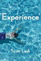 Experience - New Foundations For The Human Sciences - Lash, Scott - ISBN: 9780745695143