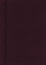 Nkjv, Vines Expository Bible, Leathersoft, Purple, Comfort Print - Vines, Jerry, Pastor (EDT)/ Nelson, Thomas - ISBN: 9780718098568