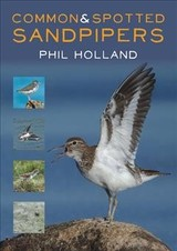 Common And Spotted Sandpipers - Holland, Phil - ISBN: 9781849953610