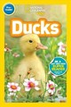 National Geographic Kids Readers: Ducks (pre-reader) - National Geographic Kids; Szymanski, Jennifer - ISBN: 9781426332104
