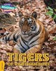 Tigers Of Ranthambore Gold Band - Scott, Jonathan And Angela - ISBN: 9781108436137