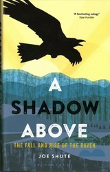 Shadow Above - Shute, Joe - ISBN: 9781472940285