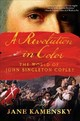 Revolution In Color - Kamensky, Jane - ISBN: 9780393354867
