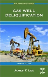 Gas Well Deliquification - Rowlan, Lynn (engineer, Echometer Company, Usa); Lea, Jr., James F. (independent Consultant, Pltech Llc, Texas, Usa) - ISBN: 9780128158975