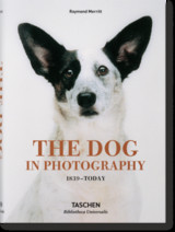 Dog In Photography 1839-today - Merritt, Raymond - ISBN: 9783836567473