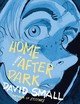 Home After Dark - Small, David - ISBN: 9780871403155