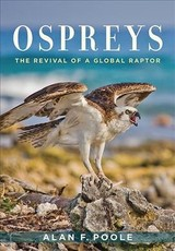 Ospreys - Poole, Alan F. (retired Editor Of The Birds Of North America Online; Senior Lab Associate, Cornell University) - ISBN: 9781421427157