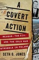 Covert Action - Jones, Seth G. - ISBN: 9780393247008
