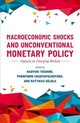Macroeconomic Shocks And Unconventional Monetary Policy - Yoshino, Naoyuki (EDT)/ Chantapacdepong, Pornpinun (EDT)/ Helble, Matthias ... - ISBN: 9780198838104