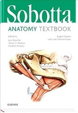Sobotta Anatomy Textbook - ISBN: 9780702067600