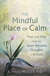 Mindful Place Of Calm - Miller, A. Paul - ISBN: 9780738761848