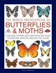 Butterflies & Moths, The World Encyclopedia Of - Morgan, Sally - ISBN: 9780754834762