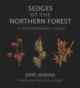 Sedges Of The Northern Forest - Jenkins, Jerry - ISBN: 9781501727085