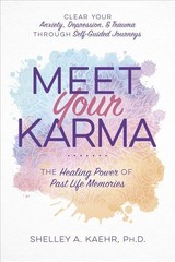 Meet Your Karma - Kaehr, Shelley A. - ISBN: 9780738762173