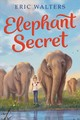 Elephant Secret - Eric Walters, Walters - ISBN: 9780358206378
