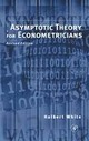 Asymptotic Theory For Econometricians - White, The Late Halbert - ISBN: 9780127466521
