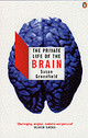 Private Life Of The Brain - Greenfield, Susan - ISBN: 9780141007205