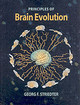 Brain Evolution - Striedter, Georg F. - ISBN: 9780878938209