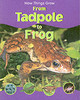 How Things Grow From Tadpole To Frog - Morgan, Sally - ISBN: 9781844582594