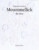 Beginner's Guide To Mountmellick Embroidery - Trott, Pat - ISBN: 9780855329198