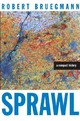 Sprawl - Bruegmann, Robert - ISBN: 9780226076904