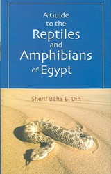 Guide To The Reptiles And Amphibians Of Egypt - Din, Sherif Baha El - ISBN: 9789774249792