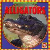 Alligators - Pohl, Kathleen - ISBN: 9780836882247