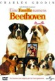 Beethoven's 2nd - ISBN: 5050582001655
