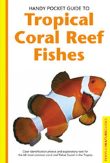 Handy Pocket Guide To Tropical Coral Reef Fishes - Allen, Gerald R./ Steene, Roger (PHT)/ Allen, Gerald R. (PHT)/ Kuiter, Rudie (PHT)/ Strickland, Mark (PHT)/ Jones, Burt (PHT) - ISBN: 9780794601867